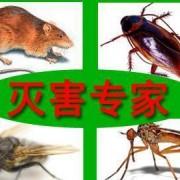 西藏金朗有害生物防治有限公司